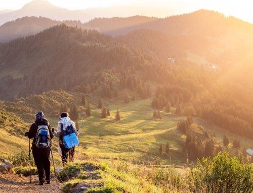 Jaką apteczkę zabrać na wycieczkę lub w góry? Zestawy pierwszej pomocy – rodzaje.